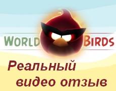 World Birds видео отзыв об игре с выводом денег