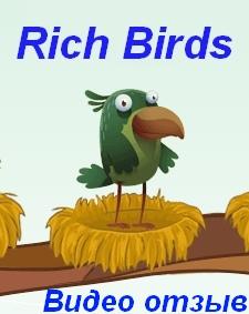 Rich Birds видео отзыв