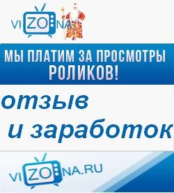 Vizona.ru – отзыв и заработок